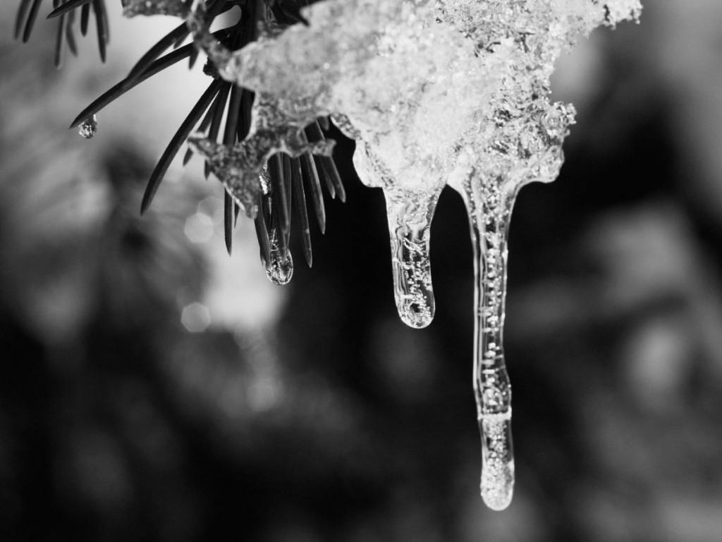 01_ice_pict0012ubw