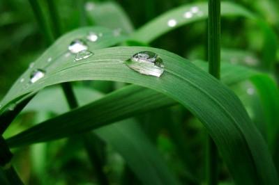 15_rain_2207