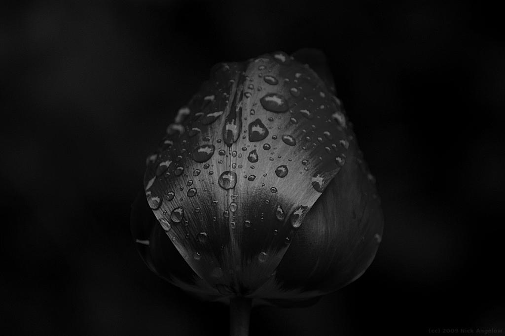 05_NA
