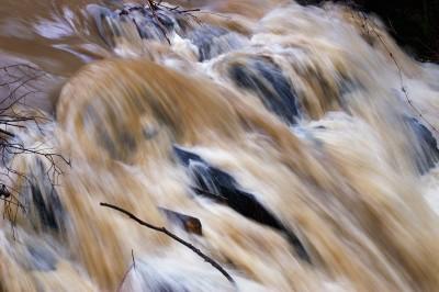 08_river_pict0159u