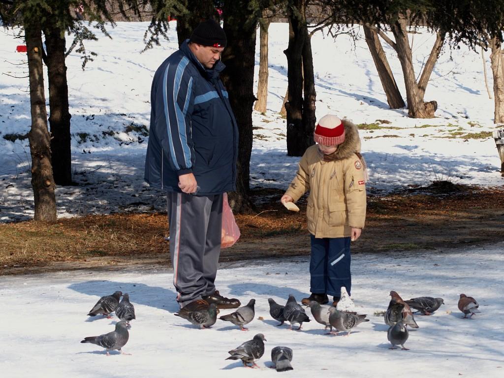 чедо, тати и гълъби