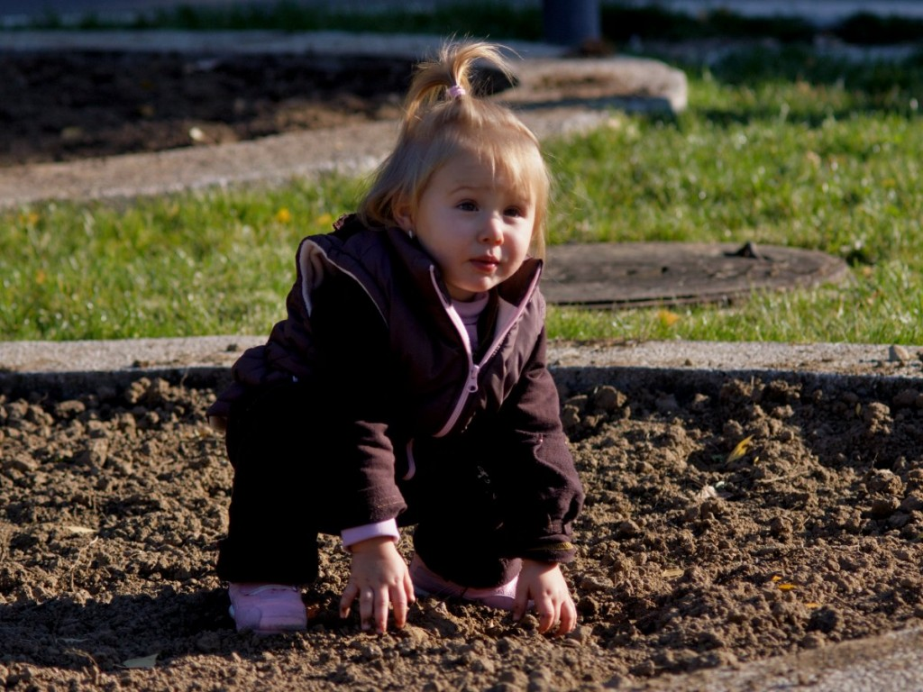 почвовед с кукуригу