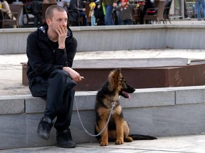 кучето - най-добрия приятел на мъжа