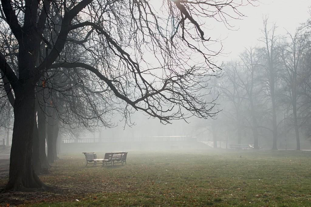 пейки в мъглата