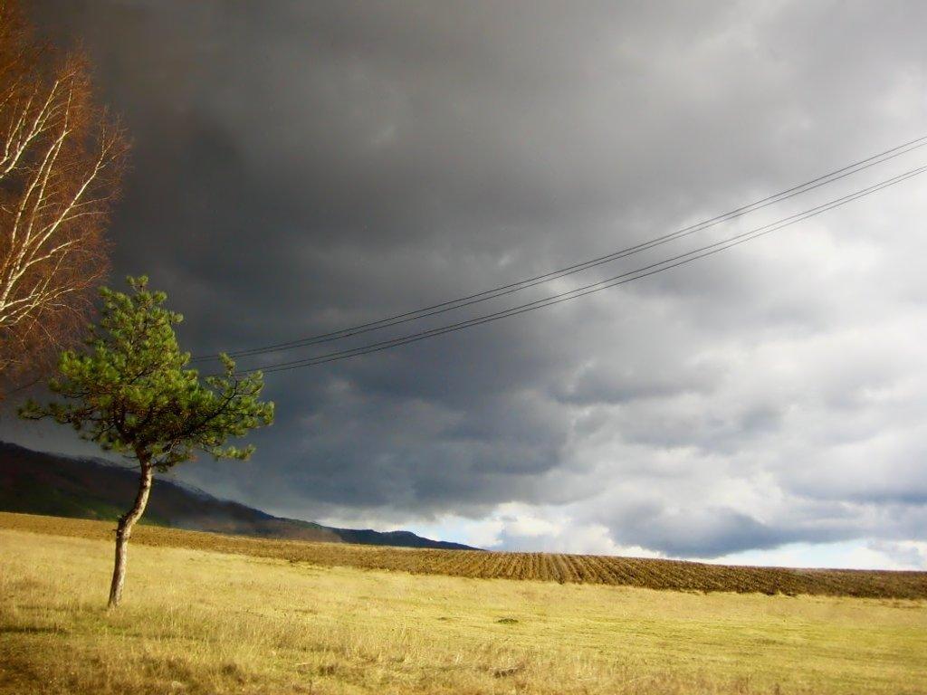 пред бурята