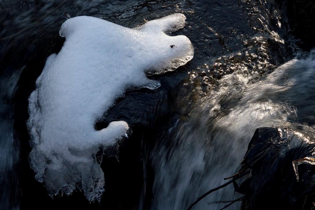 воден дракон, но бял