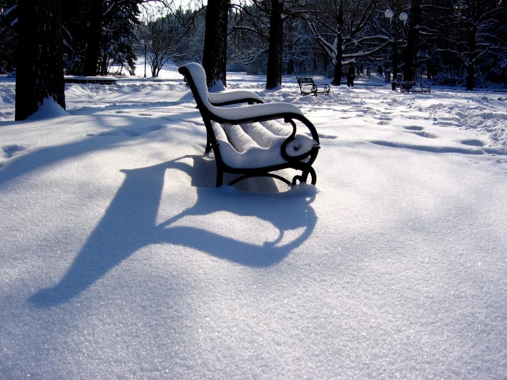 сенки в снега