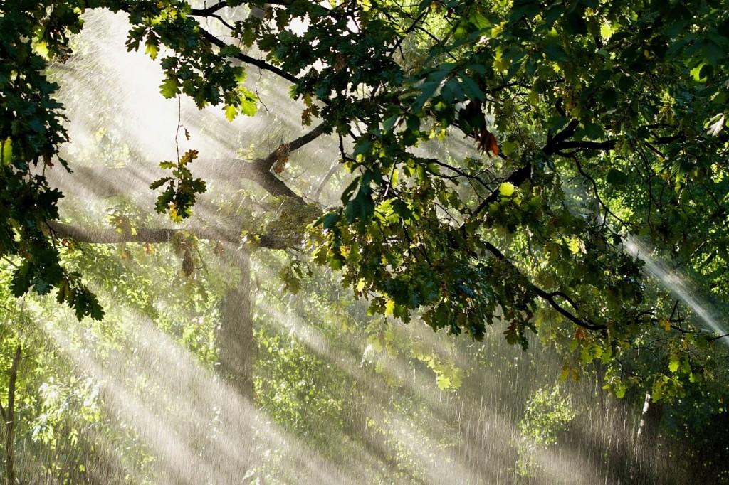 luz & agua