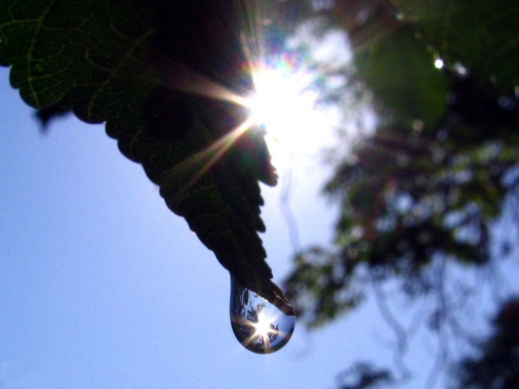 звезди и слънца в капка вода