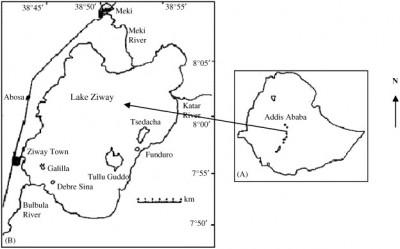 ziway map
