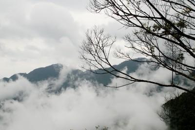 сред мъглите